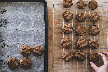 High angle close up of person removing freshly baked chocolate cookies from a baking tray, England