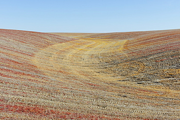 View of rolling hills and farmland, Palouse County, Washington, USA