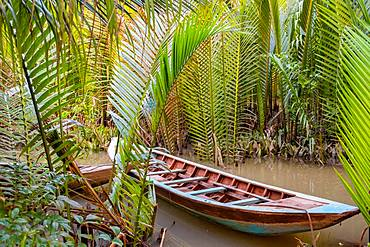 Traditional boat moored in between palm trees in the Mekong Delta, Vietnam