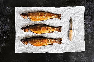 High angle close up of three freshly smoked whole trout and a knife on a white paper
