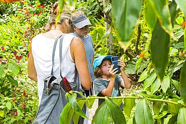 A teenage girl photographing with a smart phone on nature trail, Grand Cayman, Cayman Islands