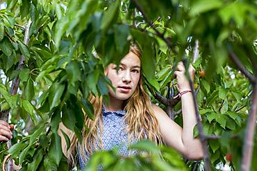 A teenage girl standing among the branches of a tree