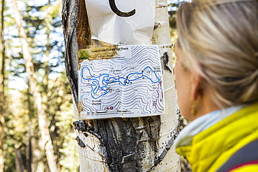 An adult woman hiker looking at a cross country hikers map