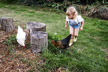 Blond girl and two chickens standing next to tree stumps in a garden