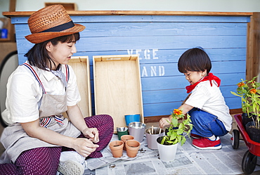 Japanese woman wearing hat and boy sitting outside a farm shop, planting flowers into flower pots, Kyushu, Japan