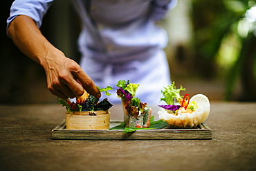 Close up of chef putting the final touches on a dish of salads and spring rolls, Vietnam
