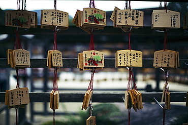 Close up of wooden tablets with messages written in Japanese at a shrine, Kyushu, Japan