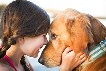 A young girl and a golden retriever dog, nose to nose, Austin, Texas, USA
