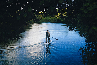 High angle view of man and his son paddle boarding along a jungle river, Guam