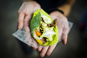 High angle close up of hands holding a fresh roll of vegetables wrapped in a leaf, Vietnam