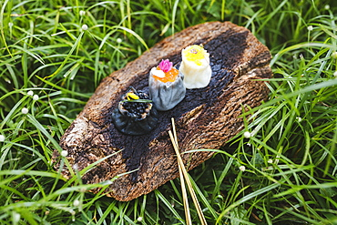 High angle close up of three siew mai dumplings on piece of tree bark on grass, Singapore