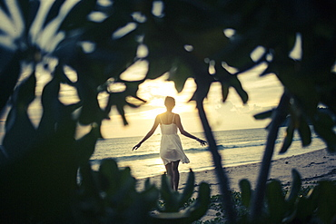 Rear view of young woman walking along beach at sunset, palm trees in foreground, Thailand