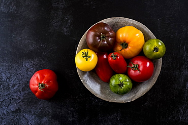 High angle close up of grey plate with selection of tomatoes in various shapes and colours on black background, United Kingdom