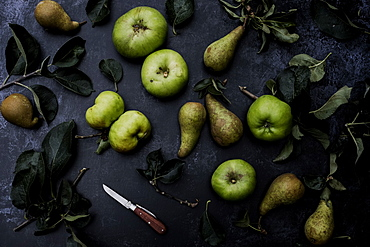 High angle close up of green pears and Bramley apples on black background, United Kingdom