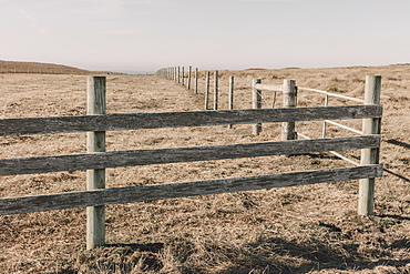 Fence and fields, pasture and farmland, Marin County, California, United States