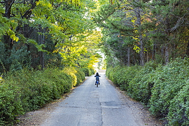 Rear view of young boy riding his bike down country road, United States