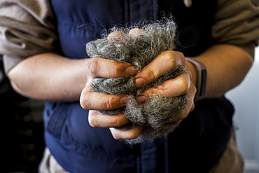 Close up of woman holding bunch of horse hair filling for saddle, Berkshire, United Kingdom