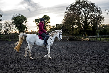 Young woman riding on white Cob horse in paddock, Berkshire, United Kingdom