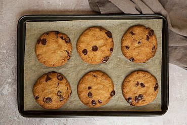 High angle close up of baking tray with freshly baked chocolate chip cookies