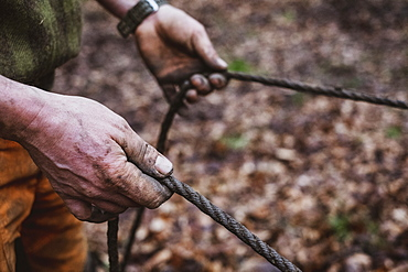 High angle close up of man holding reins of a work horse in a forest, Devon, United Kingdom
