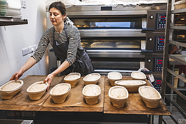 A baker checking proving baskets with risen dough before baking, artisan bakery making sourdough bread