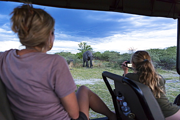Two people in a safari jeep, a woman and a teenage girl using a video camera taking footage of a mature elephant, Moremi Game Reserve, Botswana