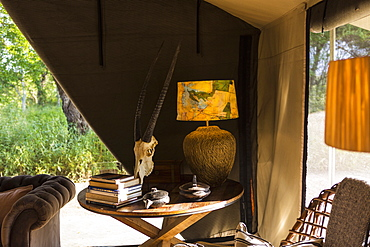 The interior of a tent in a safari camp with electric lamp and table, chairs and sofa, tent sides rolled up
