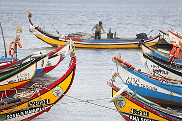 Traditional moliceiros fishing boats with high prows, painted in vivid colours, moored offshore at Torreira, Ria de Aveiro Lagoon Portugal