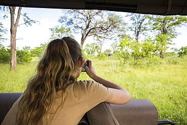 Rear view of a thirteen year old girl photographing elephants under trees, from a safari jeep, Botswana