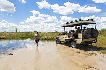 A safari vehicle with passengers, and a guide walking across sand, Okavango Delta, Botswana