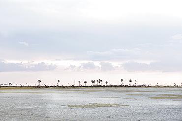 Kalahari Desert, Makgadikgadi Salt Pans, Botswana