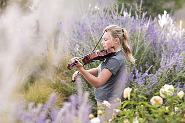 Teenage girl standing among flowering roses and shrubs playing a violin