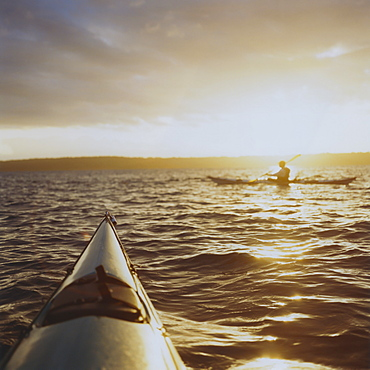 Person sea kayaking at dusk, Washington, United States