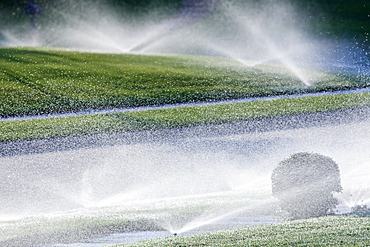 Sprinklers on Lawn, McKinney, Texas, United States