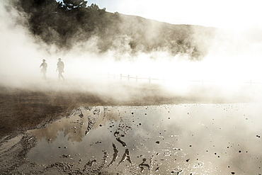 Thermal pools with mist rising from the heated water pools, Rotorua, North Island, New Zealand