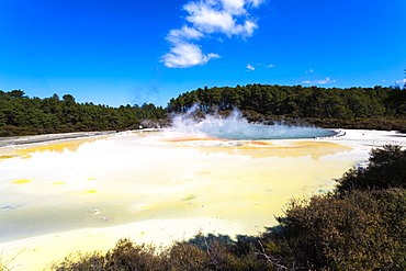 Large thermal pools with mist rising and yellow sulphur deposits, Rotorua, North Island, New Zealand