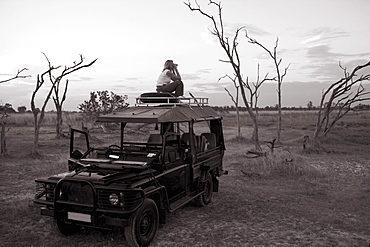 Woman standing on top of 4x4 parked in the Moremi Reserve, Botswana