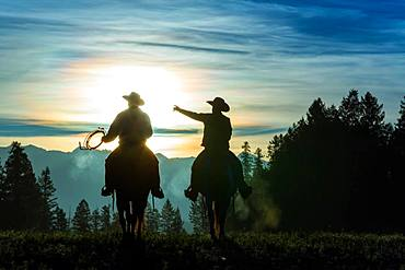 Two cowboys riding across grassland with mountains in background, early morning, British Colombia, Canada