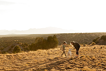 children at sunset playing with their English Cream Golden Retreiver