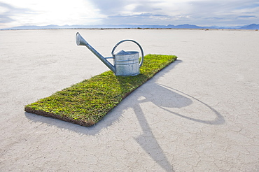Watering can on turf patch on salt flat