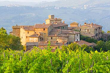 Vineyard and the medieval village of Volpaia in Tuscany, near Florence in Chianti Italy