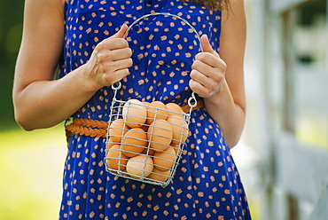 A woman holding a basket of hen's eggs gathered from the chickens on a farm, New York state, USA