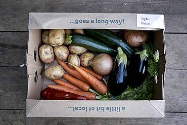 High angle close up of an organic vegetable box with a selection of fresh produce, Oxfordshire, United Kingdom