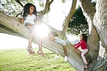 Young mixed race girl with her younger sister and brother, climbing a tree
