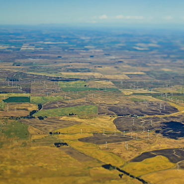 Wind Turbines on Farmland, Sacramento, California, United States of America