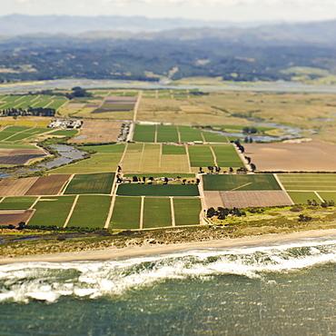 Coastal Farmland, San Mateo, California, United States of America