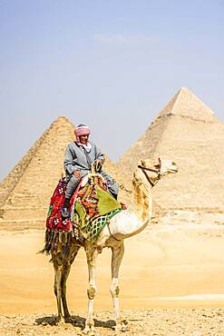 Tombs of the pharaohs Khufu, Khafre, and Menkaure, the pyramids, a guide riding a camel