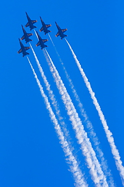 Blue Angels perform at Seafair, Seattle, Washington, USA, Seattle, Washington, USA