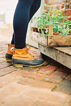 A woman wearing waterproof boots, with a box of seedlings, England