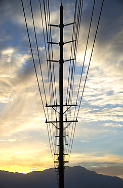 A line of telegraph poles stretching into the distance, California, United States of America
